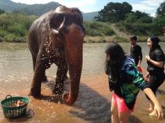 Regent's Boarding trip to Chiang Mai